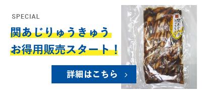 関あじりゅうきゅうお得用バナー